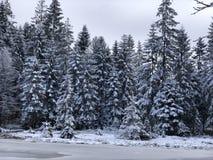 Vestido en invierno foto de archivo