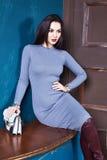 Vestido flaco del estilo del negocio de la mujer morena atractiva perfecto Imagenes de archivo