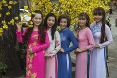Vestido nacional do Ao Dai Vietnamese imagem de stock royalty free