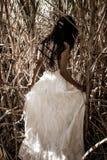 Vestido nupcial branco com a jovem mulher romântica bonita no campo do cana-de-açúcar Fotos de Stock Royalty Free
