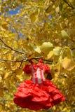 Vestido rojo femenino Imágenes de archivo libres de regalías
