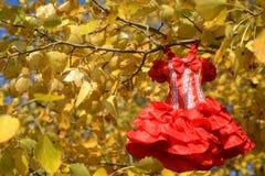 Vestido rojo femenino Fotos de archivo libres de regalías