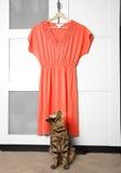 Vestido vermelho Fotografia de Stock