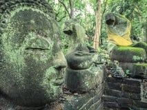 Vestige de Bouddha en nature verte chez Wat Umong, Chiang Mai, Thaïlande, portrait vert de Bouddha couvert de la mousse photos stock