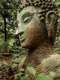 Vestige de Bouddha en nature verte chez Wat Umong, Chiang Mai, Thaïlande, portrait vert de Bouddha couvert de la mousse photo stock