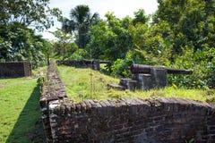 Vesting Kanonnen van Fort Zeelandia, Guyana Het fort Zeeland wordt gevestigd op het eiland van de Essequibo-rivier royalty-vrije stock afbeelding