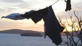 Vestiti che si asciugano in vento vicino al fiume archivi video