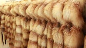 Vestiti e pellicce di lusso in un deposito dettagliante di modo video d archivio