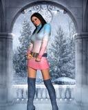 Vestiti sexy di inverno Illustrazione Vettoriale