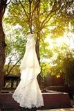 Vestito da sposa Immagini Stock