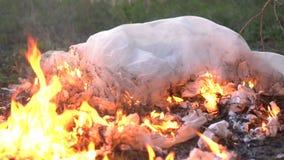 Vestito da sposa bianco bruciante video d archivio