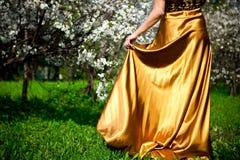Vestito dall'oro Immagini Stock