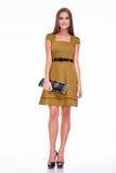 Vestito dalla donna di affari del modello di fascino di stile del catalogo dei vestiti di modo Immagine Stock