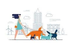 Vestito dalla ragazza e cani d'uso delle passeggiate delle cuffie sul guinzaglio lungo la via della città contro le costruzioni s Fotografia Stock