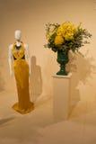 Vestito dorato Immagini Stock