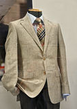 Vestito elegante dell'uomo Immagini Stock Libere da Diritti