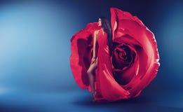 Vestito favoloso dalla rosa del wearinf abbastanza castana della donna Fotografia Stock