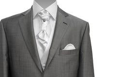Vestito grigio moderno dell'uomo Fotografie Stock