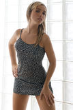 Vestito grigio sexy Fotografie Stock Libere da Diritti