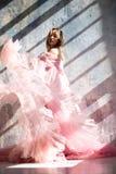 Vestito rosa dal cigno, congelato momento fotografia stock libera da diritti