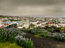 Vestmann-Inseln Island lizenzfreies stockfoto