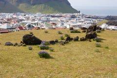 Vestmannaeyjar Royalty-vrije Stock Afbeeldingen