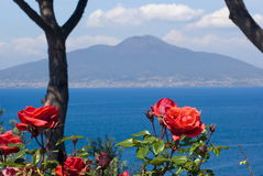 Vesuvius, Naples. View of Vesuvius behind some rses, Naples Stock Image