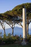 Vesuvius, Naples. View of Vesuvius behind some trees, Naples Stock Photos