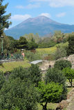 Vesuvius over Pompeii. Sunny date next to the ruins of pompeii. You have a clear view of the volcano vesuvius dominating the scenery. A lot of vegetation Stock Photo