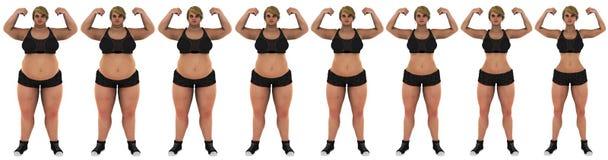 Vet aan de slanke voorzijde van de het verliestransformatie van het vrouwengewicht Stock Foto's