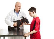 Vet Cares For Teens Dog. Teen boy takes his dog to the veterinarian.  Isolated on white Stock Photo