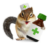 Vet concept, funny squirrel doc hold bottle medications, on whit Royalty Free Stock Photo