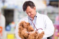 Vet doctor examining cute poodle dog with stethoscope at clinic Stock Images