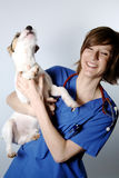 Vet and dog. Nurse or doctor vet holding a dog on a white blackground Royalty Free Stock Photo