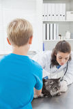 Vet examining a cat with its owner Stock Photos