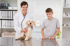 Vet examining a dog with its owner Stock Image