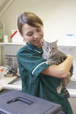Vet Holding Cat In Surgery Royalty Free Stock Photos
