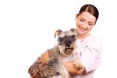 Vet holding a dog and smiling stock photography