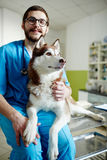 Vet with patient Stock Image