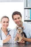 Vet and pet owner with puppy. Portrait of female vet and pet owner with puppy in clinic Stock Image