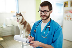 Vet prescriptions Stock Photo