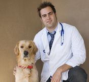 Vet and retriever 3. Handsome young doctor veterinarian and a golden retriever dog Stock Photography
