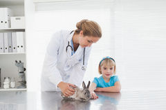 Vet showing a young girl a bunny rabbit Royalty Free Stock Photography