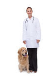 Vet standing with a dog Royalty Free Stock Image