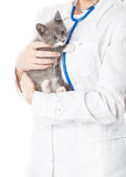 Vet with stethoscope and kitten Royalty Free Stock Photos
