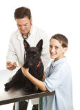 Vet Treats Boys Dog Stock Images