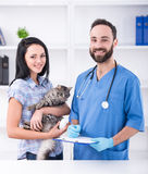 Vet. Young women with her cat on a visit to the vet Stock Photo