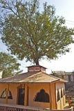 Vetala temple Stock Photo