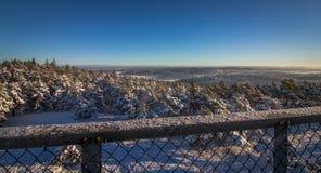 Vetatoppen sikt från tornet i Fredrikstad, Norge Vinter sol, snö Arkivbild