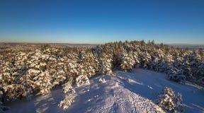Vetatoppen sikt från tornet i Fredrikstad, Norge Vinter sol, snö Royaltyfri Fotografi